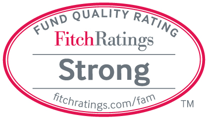 Fitch_StrongSeal_TM_v2.jpg (Title)